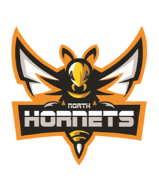 Hornets Fridge Magnet